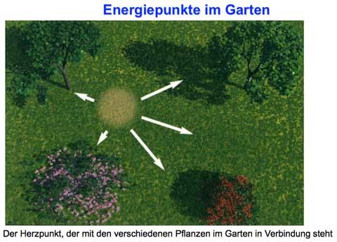Energiepunkte im Feng Shui Garten