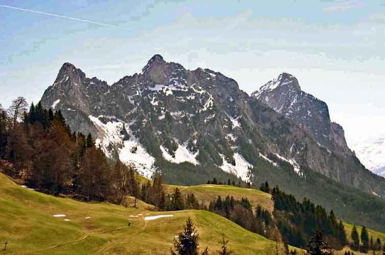 FSC Schweiz
